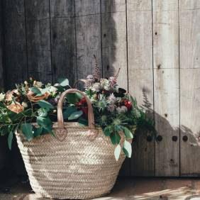 6 اشتباه رایج که منجر به مرگ گیاهتان میشود